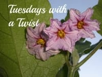TuesdayWithATwistLOGO