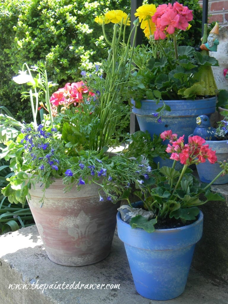 French Flower Pots www.thepaintedrawer.com