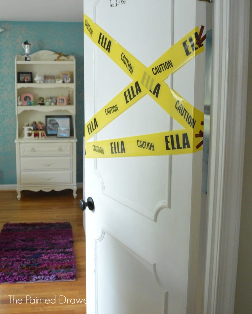 Paneled Door www.thepainteddrawer.com