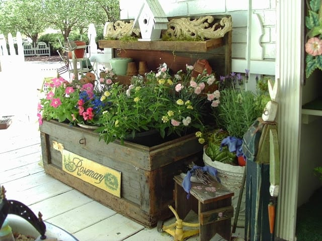 Penny's Vintage Home container garden