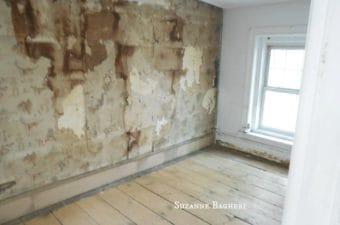 Carriage House Brooklyn back room wall