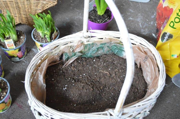 Vintage Basket Bulb Garden