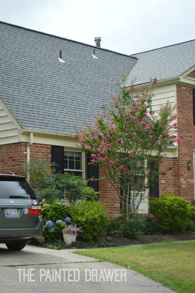 Georgetown Gray Certainteed Shingles