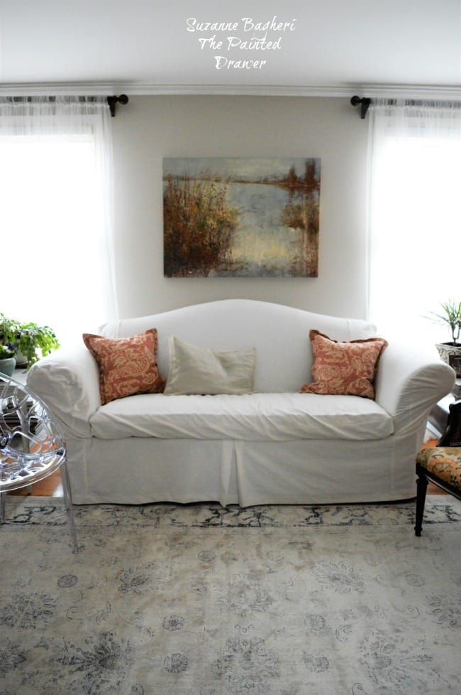 Safavieh Rug in Living Room