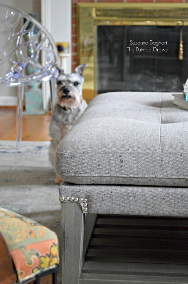 Living Room Gray Ottoman