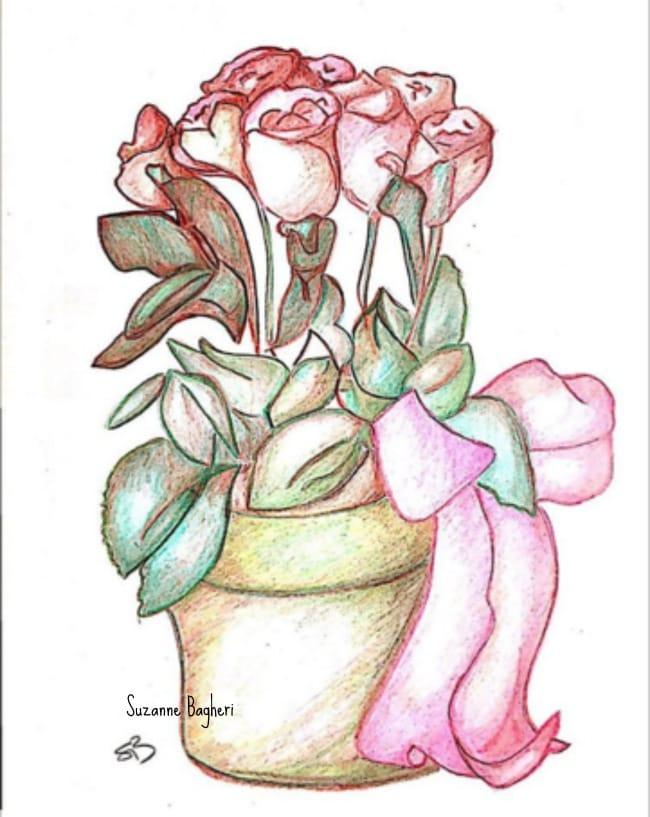 252 & Flower Pot Sketch -