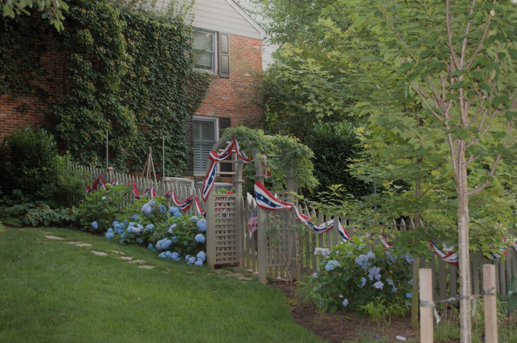 Fourth of July Garden