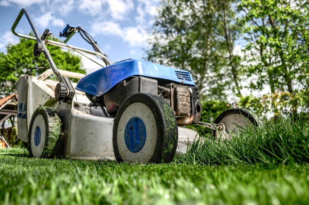 Tackling a Big Garden Renovation