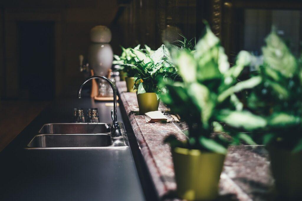 Reducing Humidity at Home