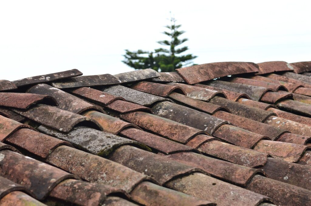 What to do When There Is a Problem With Your Roof